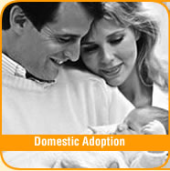 Domestic Adoption Services